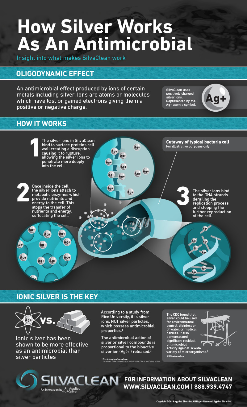SilvaClean-Healthcare-Providers-Infographic